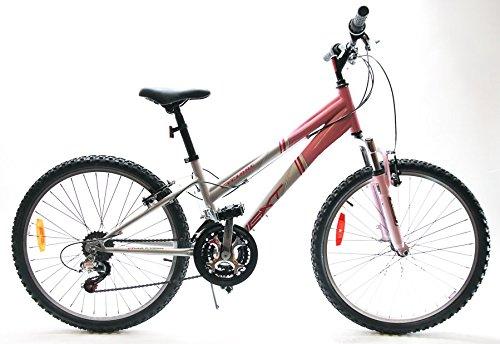 "NEXT Cyclone 18"" Womens/Lady 26"" MTB Bike 21 Speed Pink/Silver NEW"
