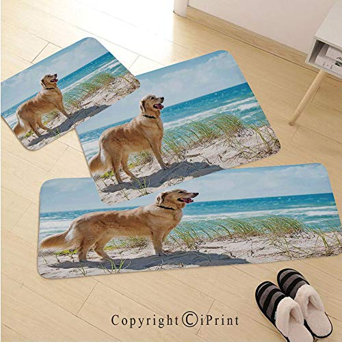 Dog Lover Decor 3D Non-Slip Kitchen Mat Runner Rug Set,3pc Kitchen Rug Set,Golden Retriever on a Sandy Dune Overlooking Tropical Beach Ocean Outside Sky Decorative,for Entryway Kitchen and Bedroom,