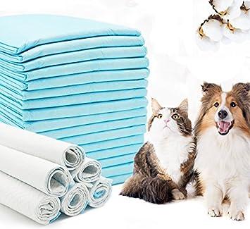BPS Empapadores de Entrenamiento XL para Perros Gatos Perfumes con Feromonas para Atraer los Cachorros Tamaño XL (20pcs 60*90 cm) BPS-2170*1: Amazon.es: ...