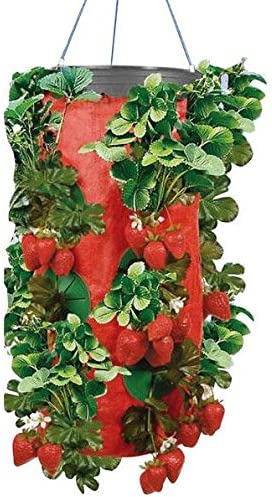 New As Seen on TV Brand Ideal for 9 to 10 Plants One Strawberry Planter