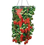 Upside Down Vertical Strawberry & Herb Gardening Grow Bag Planter - Organic Watering System - As Seen On TV