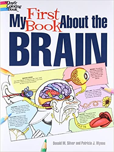My First Book About The Brain Dover Childrens Science Books Patricia J Wynne Donald M Silver 9780486490847 Amazon