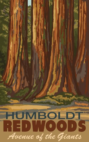 Northwest Art Mall Humboldt Redwoods Avenue of The Giants Trees Artwork by Paul A. Lanquist, 11-Inch by 17-Inch
