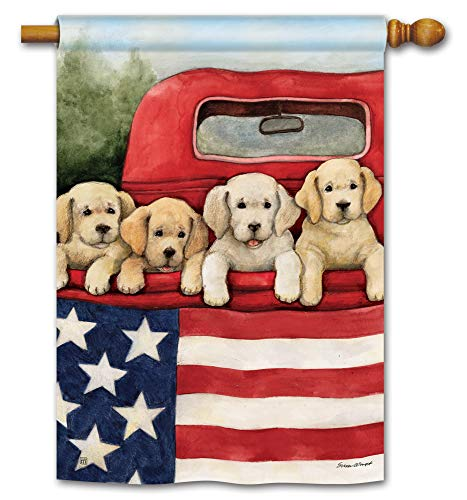 BreezeArt Studio M Patriotic Puppies Decorative Summer Dogs Standard House Flag Banner - Premium Quality, 28 x 40 Inches ()