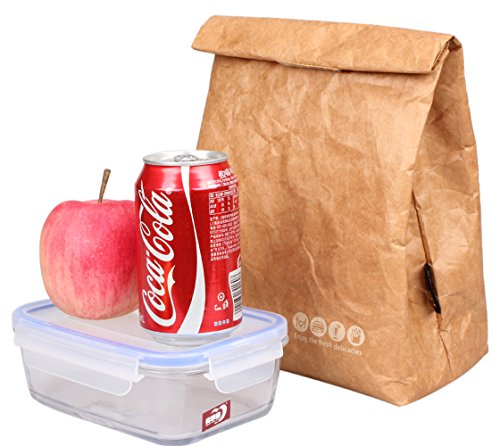 (SANNE Lunch Bag Box Cooler Bag Insulated Retro Style Holiday Gift Set For Women Adults Boys Girls Reusble Paper Leakproof Tyvek Handle Bag Go Work Picnic Shool(Brown))