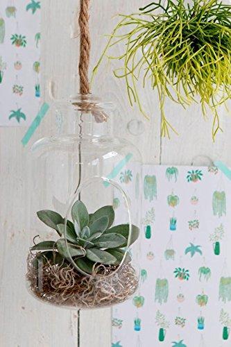 Nadeco Pflanzenglas Deko Flasche Zum Hangen H 21cm O12cm Glasvase