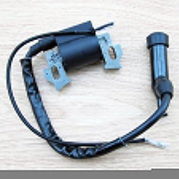 Honda GX110 GX120 GX140 GX160 GX200 Motor generador Motor Bobina de encendido para cortacésped Magneto partes: Amazon.es: Jardín