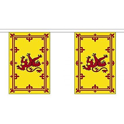 3 metros 10 (22,86 cm x 15,24 cm) de la bandera de Escocia ...