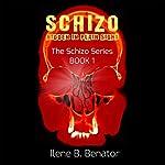 Schizo: Hidden in Plain Sight | Ilene B. Benator