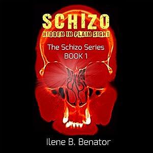 Schizo: Hidden in Plain Sight Audiobook