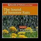 The Sound of Summer Rain