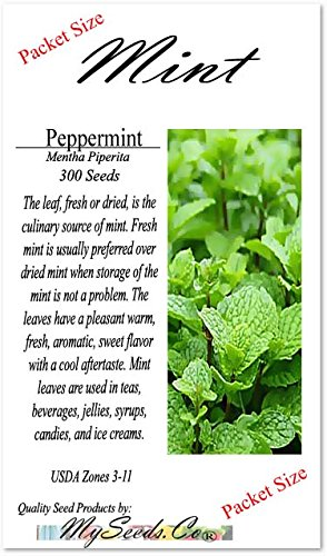 PEPPERMINT MINT Seed - MENTHA MINT SEEDS - Medicinal and Cosmetic - FRAGRANT & WARM - Makes Great Cup of Tea (360000 Seeds -  1 oz)