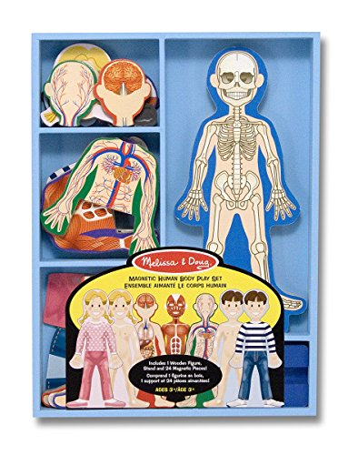 Melissa & Doug Magnetic Human Body Anatomy Play Set With 24 Magnetic Pieces and Storage Tray -