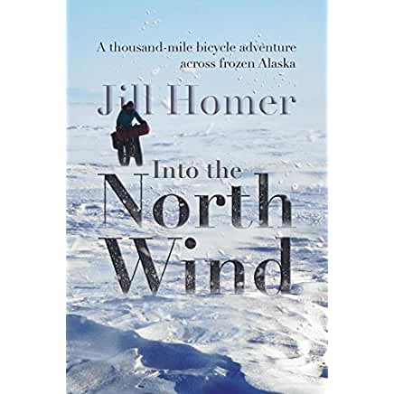 Into the North Wind by Jill Homer