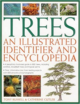 Book Trees: An Illustrated Identifier and Encyclopedia: A Beautifully Illustrated Guide to 600 Trees, Including Conifers, Broadleaf Trees and Tropical Palms