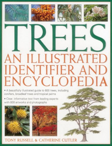 trees-an-illustrated-identifier-and-encyclopedia-a-beautifully-illustrated-guide-to-600-trees-includ