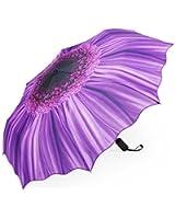 Plemo Automatic Umbrella Folding Parasol Compact Umbrellas for Women and Men, Purple Daisy