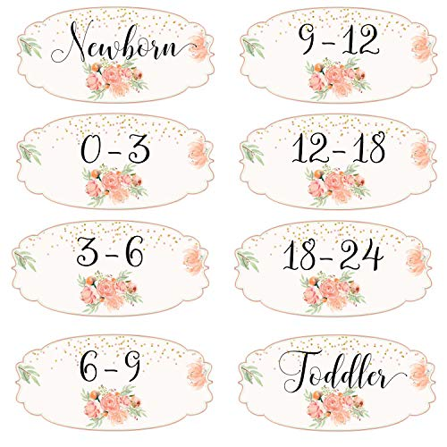 Mumsy Goose Girl Nursery Drawer Labels Peach Floral Baby Clothes Organizers Gold Mint Dresser Stickers (Peach Label)