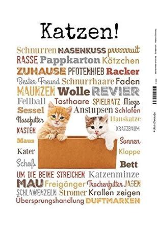 ComCard Gatos. Cats haustier Amor Cartel de Chapa, Metal Sign, Tin: Amazon.es: Hogar
