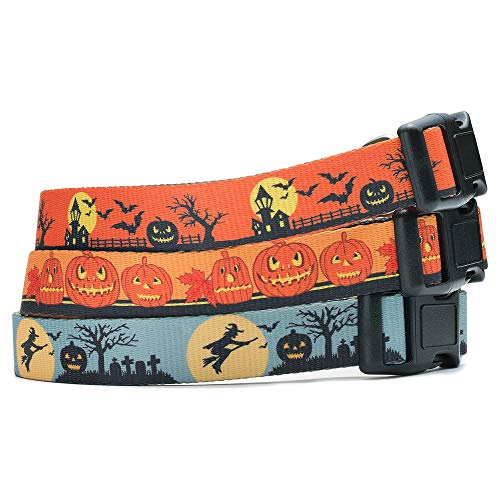 Halloween Dog Collar (The Witch, Small) -