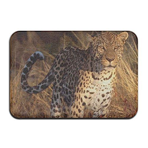 Cheetah Leopard Panther Art Outdoor Bathroom Mats 2416 Inch