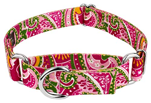 (Country Brook Design 1 1/2 Inch Pink Paisley Martingale Dog Collar - Large)