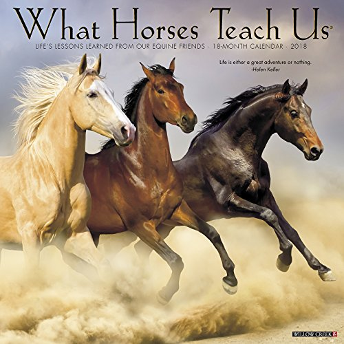 What Horses Teach Us 2018 Calendar cover