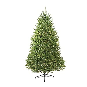 Northlight Pre-Lit Northern Full Artificial Christmas Tree with Clear Lights, 14' 47