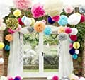 "Pom Poms -12Pcs of 10"" 12"" 14"" Multi-Colors Tissue Paper Flowers Pom Poms Wedding Decor Party Decor Pom Pom Flowers Pom Poms Craft Pom Poms Decoration"