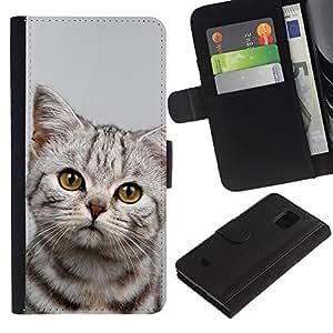 Stuss Case / Funda Carcasa PU de Cuero - Kitten Sad Manx Azules Shorthair - Samsung Galaxy S5 Mini, SM-G800