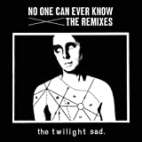 No One Can Ever Know - The Remixes