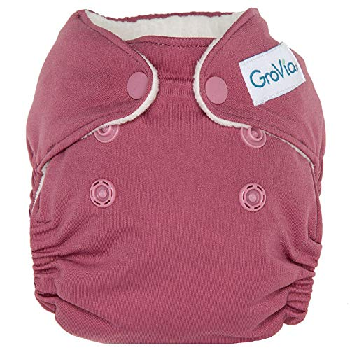 GroVia Newborn All in One Snap Reusable Cloth Diaper (AIO) (Petal)