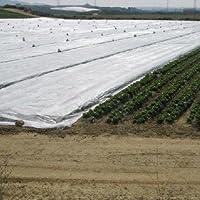 PAMPOLS Manta térmica de 4,10x12 Metros para Proteger Cultivos, Plantas y árboles de Exterior de Las heladas. Malla Anti…