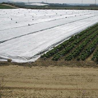 PAMPOLS Manta térmica de 4,10x12 Metros para Proteger Cultivos, Plantas y árboles de Exterior de Las heladas. Malla Anti-heladas. Protector Plantas.