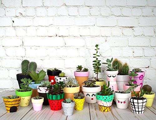 My Urban Crafts 2'' Mini Terracotta Clay Pots - Great for Succulent & Cactus Nursery Planter, DIY Craft Projects, Wedding and Party Favors (Set of 20) by My Urban Crafts (Image #4)