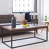 Nathan James 31101 Doxa Solid Wood Modern Industrial Coffee Table, Black Metal Box Frame With Dark Walnut Finish