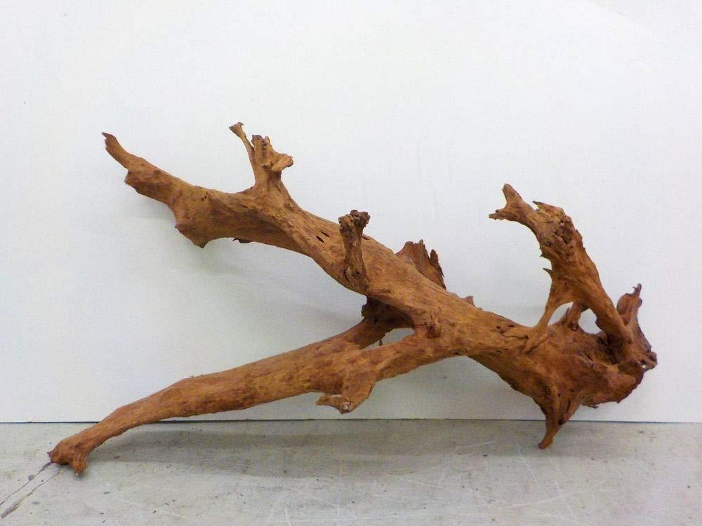 AQUARISTIKWELT24 7487 XXL Mangrove Root Dimensions 145 x 55 x 80 cm
