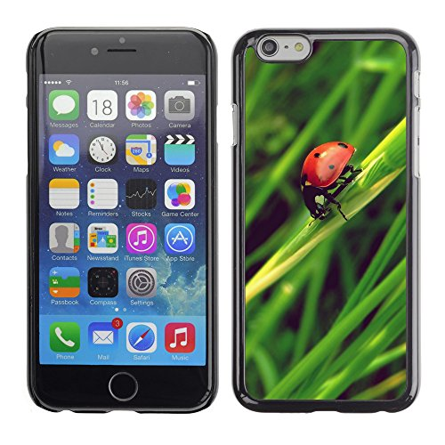 Premio Sottile Slim Cassa Custodia Case Cover Shell // V00003538 coccinelle // Apple iPhone 6 6S 6G PLUS 5.5""