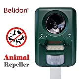 Cheap Belidan Animal Repellent Ultrasonic Outdoor – Animal Repeller – Cat Dog Skunk Fox Rats Raccoon Repellent – Animal Deterrent Device Solar Powered – Motion sensor LED lights USB charger