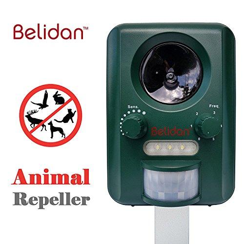 Cheap Belidan Animal Repellent Ultrasonic Outdoor – Animal Repeller – Cat Dog Skunk Fox Rats Raccoon Repellent – Animal Deterrent Device Solar Powered – Motion sensor LED lights USB charger