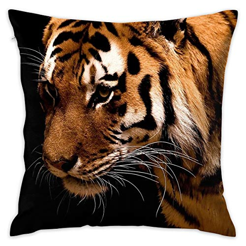 18x18 Inches Square Throw Pillow Covers Animals Black Tigers Print Pillow Cushion Cases for Couch Sofa Bed