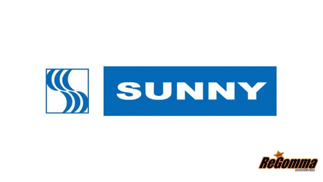 SUNNY Wintermax NW211-225//45 R17 94V Invernali