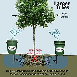5-Gal Root Seeker | Std Watering System | 6-pk