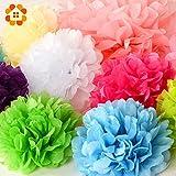 HATABO Pom Poms Paper House DIY 30pcs 4'' 6'' 8''(10cm 15cm 20cm) Decorative Tissue Paper Pom Poms Mix Color Flower Balls Pompom for Wedding Party Home Decoration (Random)
