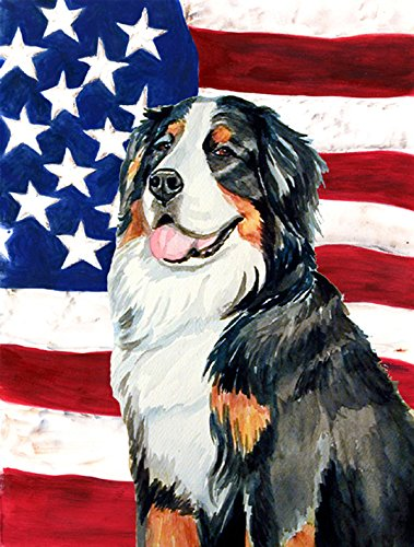 Caroline's Treasures LH9003CHF USA American Flag with Bernese Mountain Dog Flag Canvas, Large, Multicolor Review
