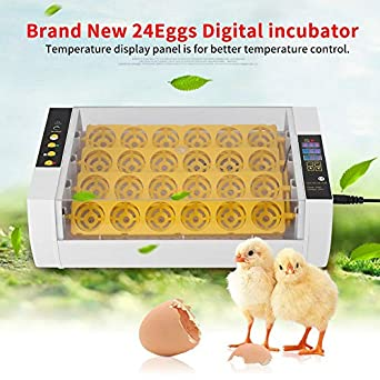 Automatic Digital Egg Incubator Auto-Turning 32 Eggs Hatcher for Chick Duck Kit