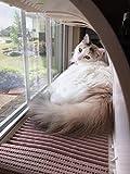 WindowKitty cat window seat