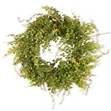 National Tree 22 Inch Berry Wreath with Boxwood Leaves and Green Berries (GAHB30-22WG) Review