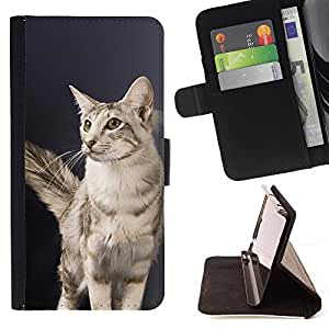 Momo Phone Case / Flip Funda de Cuero Case Cover - Oriental Gato de pelo largo British American; - Samsung Galaxy S3 MINI 8190