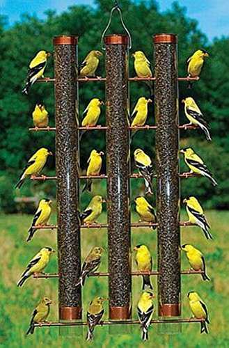 CHSGJY Finches Favorite 3 Tube Finch Thistle Seed Bird Feeder Cooper - 3 Tube Finch Feeder